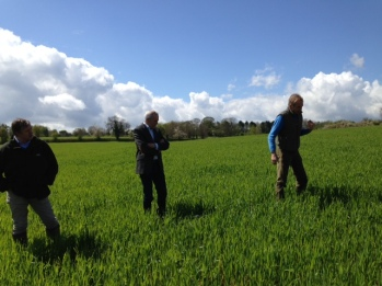 In field Discussion